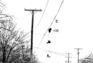022813snowyshoes